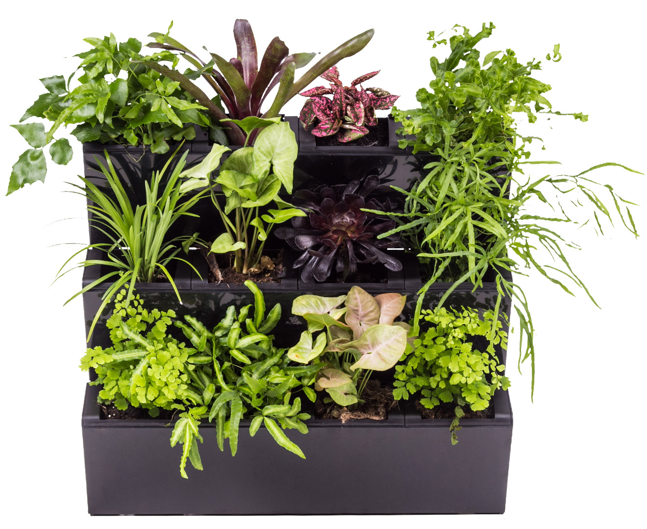 Awesome Catch.com.au | Hills Self Watering Garden Wall 3 Pack