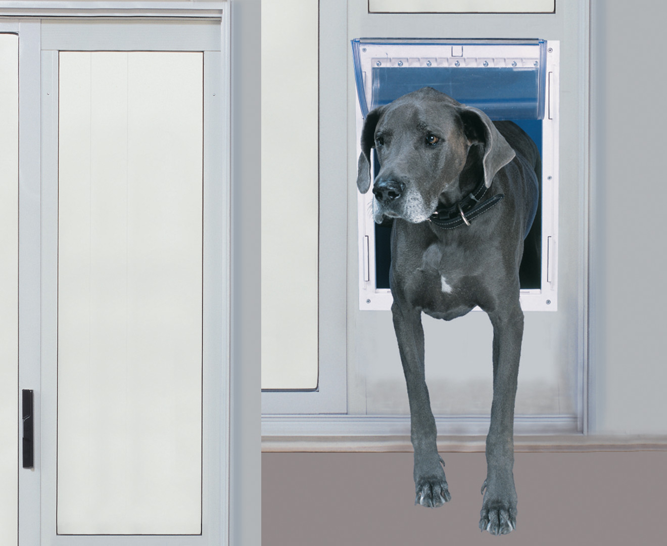 Pig In Mud Modular Super Large Pet Patio Door Silver Catch