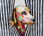 Dog Behind Curtain 70x70cm Oil Painting On Canvas 4