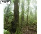 Mossy Rainforest 75x75cm Canvas Wall Art 1