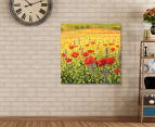 Fromelles Poppies 75x75cm Canvas Wall Art 2
