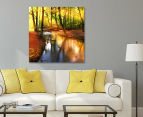 Sunkissed Forest 75x75cm Canvas Wall Art 2