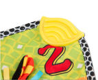 Playgro Jungle Blankie Zebra 4