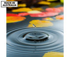 Droplet On Lily Pond 75x75cm Canvas Print 1