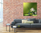 Water Lily 75x75cm Canvas Print 2