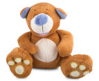 Nuby Tickle Toes Plush Bear 1