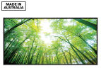 Sun Through Trees 50x25cm Framed Wall Art 1