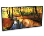 Sunkissed Forest 50x25cm Framed Wall Art 2