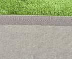 3 x Monroe 80x50cm Super Soft Microfibre Shag Rug - Lime 5