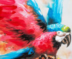 Parrot Landing 70x70cm Oil On Canvas Wall Art 4