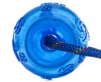 KONG Rope Squeezz Dog Toy - Blue 3