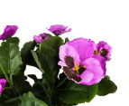 Set of 2 Artificial 28x24cm Potted Pansies - Purple 3