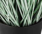 Artificial 62cm Potted Pampas Grass - Green/White 4