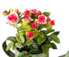 Set of 2 Artificial 17x14cm Mini Roses in Tin Watering Can - Pink 5