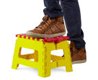 Plastic Folding Step Stool - Randomly Selected 2