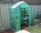 Greenlife 2-Tier Walk-In Greenhouse w/ PE Cover - Green 2