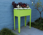 Greenlife 600x300mm Mini Raised Garden Planter - Fresh Lime 4