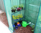 Greenlife 2-Tier Walk-In Greenhouse w/ PE Cover - Green 4