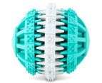 2 x VitaPet Dental Fresh Breath Rubber Ball Toy - Green/Grey 4