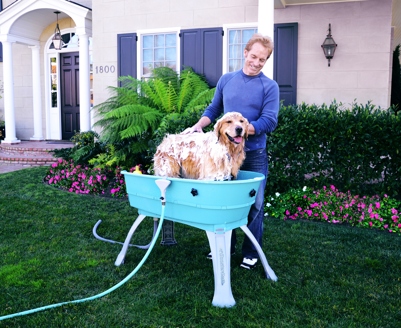 Booster Large Elevated Pet Bathing Station Ebay