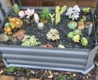 Greenlife 800x500mm Patio Raised Garden Bed w/ Base - Slate Grey 4
