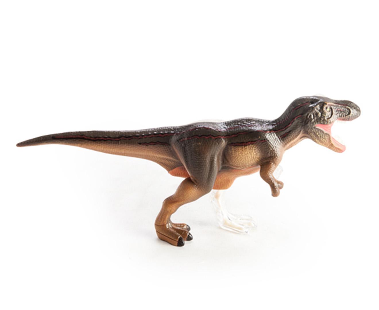4D Vision - T-Rex anatomy model 9318051113442   eBay