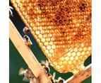 Antipodes - Manuka Honey Skin-Brightening Eye Cream 30ml 5