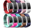 Yousave Fitbit Charge 2 Strap 10-Pack - Large 1