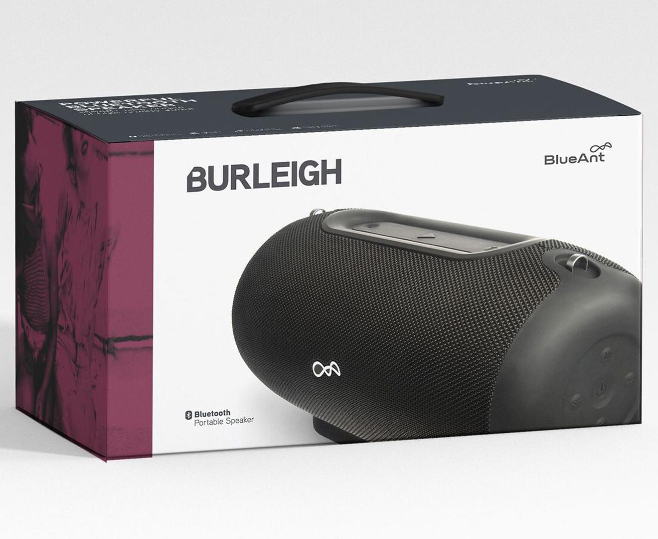 BlueAnt Burleigh Portable Music Speaker - Black