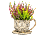 Set of 2 Willow Teacup Planters | M&W 4