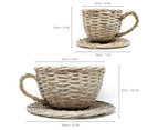 Set of 2 Willow Teacup Planters | M&W 5