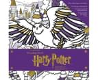 Harry Potter Winter at Hogwarts: A Magical Colouring Set Book 1