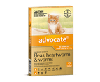 Advocate Small Cat Orange 0-4kg 3 Pack 1