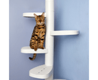 Monkee Cat Tree, Scalable Cat Climbing Ladder 18 Trunk Starter Pack 2
