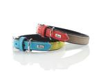 Hunter Capri Duo Colour Leather Dog Collar, Small to Medium Breeds - Linden Green Teal 2