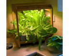 Wooden Kitchen Smart Garden With LED Grow Light - Stylish - Easy To USE 3