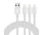 WIWU 1M 2M 3M 5Packs iPhone Cable Nylon Braided Phone Cable Fast Charger Lightening Cord (Silver) 1