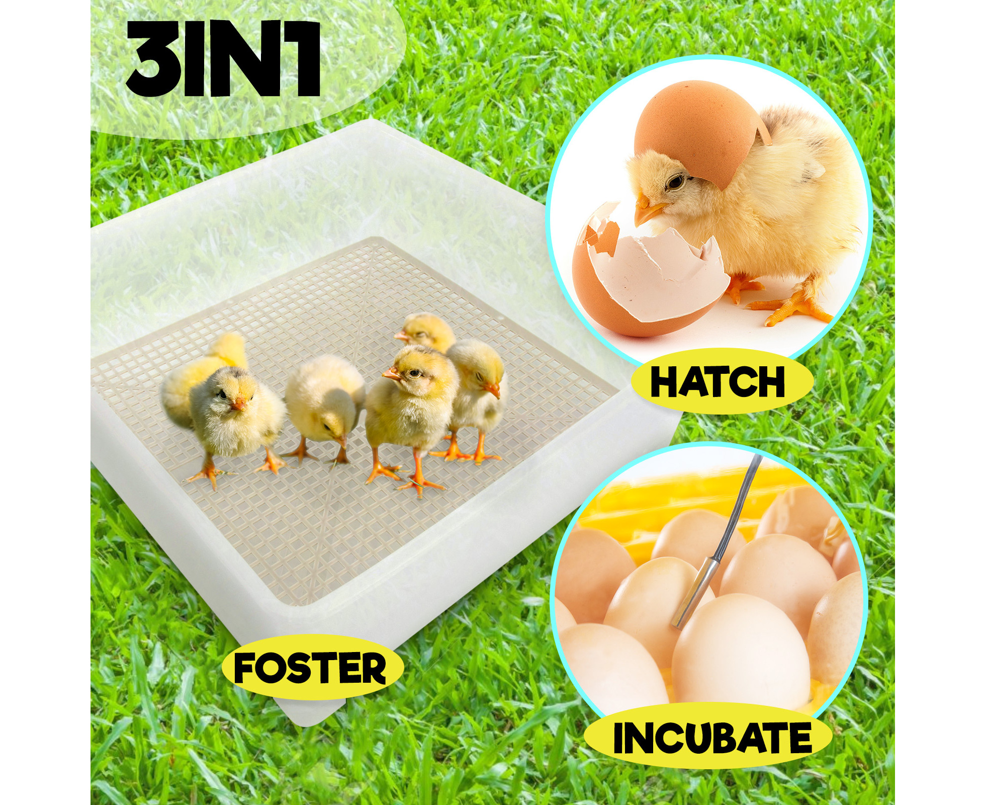 LADIES HALF A HATCHING CHICK ON EACH FOOT DOUBLE SIDED EGG SOCKS ONE SIZE