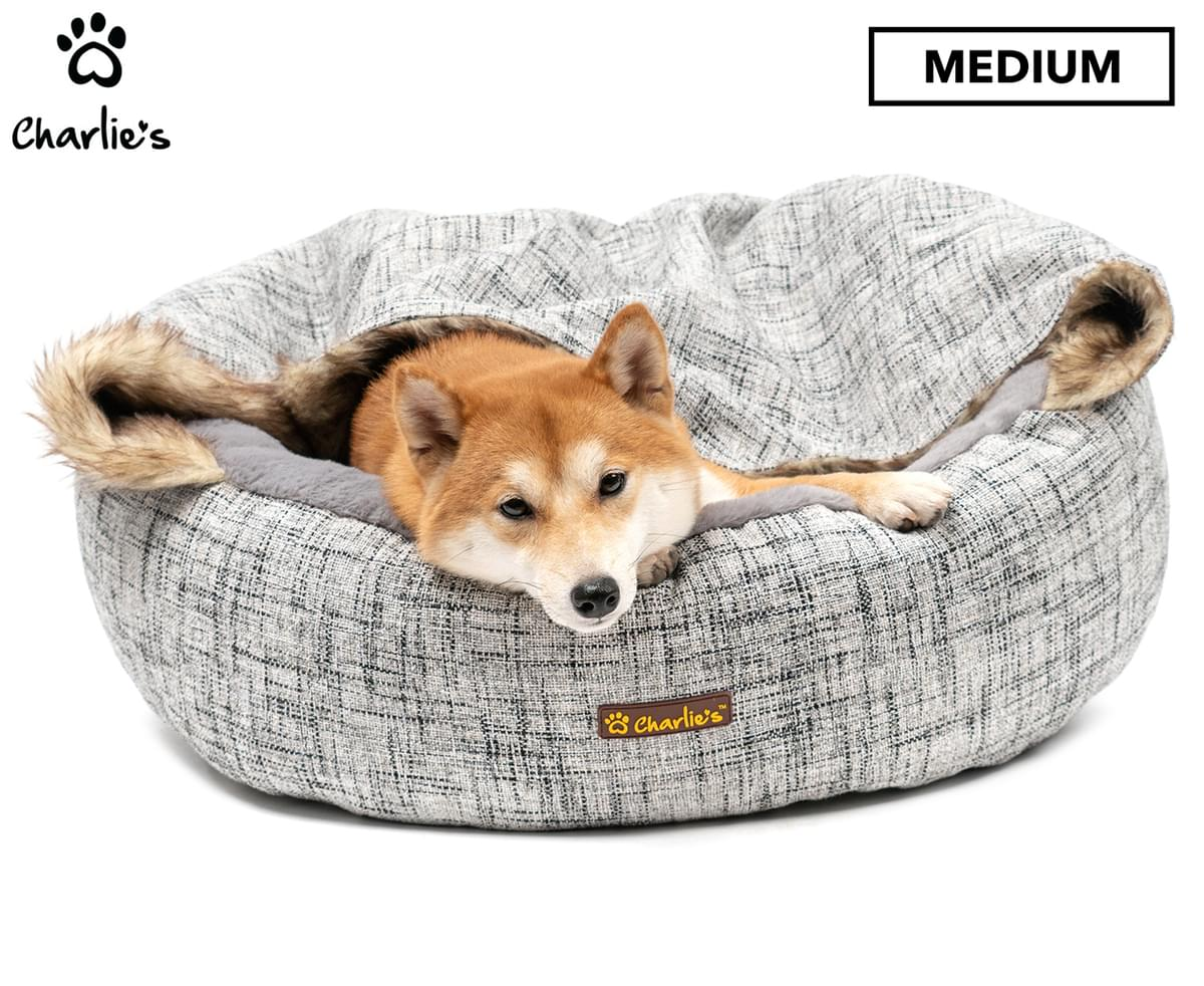 Shiba inu dog relaxing in a snuggle cave bed