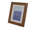 Homeworth Photo Frames Certificate Frames Series Sizes Timber Color 3
