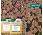 Orange Oil for Weed Control 5