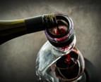 Deluxe Wine Aerator & Tower Set 3