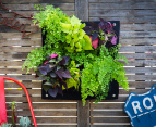 Four Pocket Wall Planters - Black 9