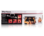 Perfect Fitness Upper Body Door Multi-Gym 1